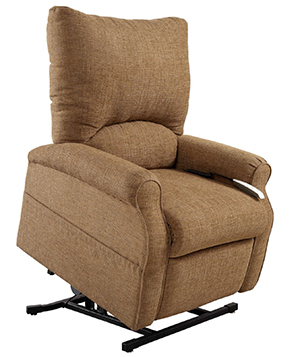 Mega Motion AS 1001 Elk Electric Power Recline Easy Comfort Lift Chair  Recliner